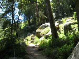 idyllic path