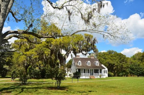 pickney plantation