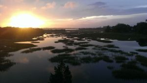 sunrise over ashley river