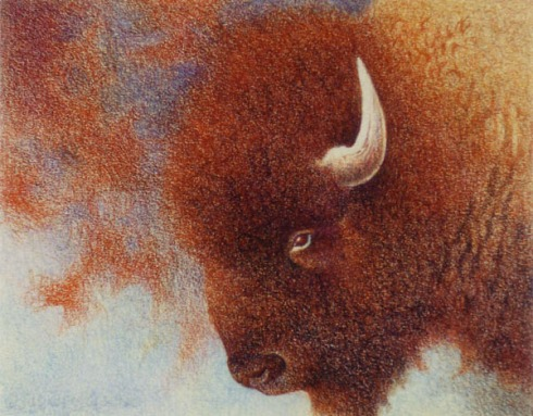 Red_Buffalo_by_Cloverfish