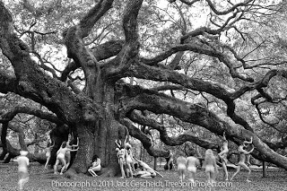 Angels_TreeSpiritProject_700p_WEB